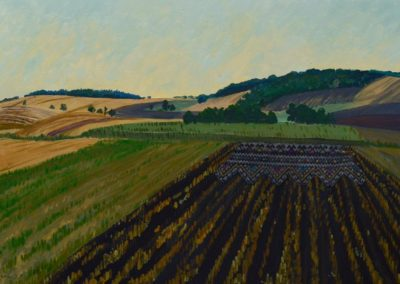 """Olesia Kaznokh """"Stubble field and stitches embroidery"""" From the """"Ploughland"""" cycle"""